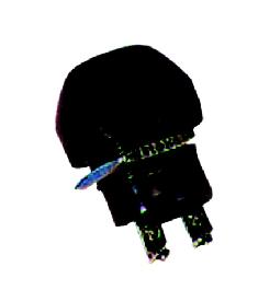 Druckschalter (Hupenknopf)